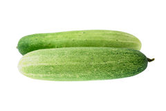 Cucumber. Green cucumber on a white background stock photo