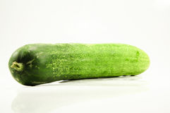 Cucumber. Green and white background Stock Images