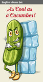 A cucumber beside the icecubes Royalty Free Stock Photography