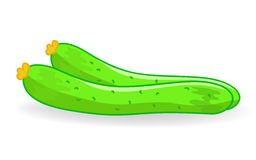 Cucumber  illustration Stock Photo