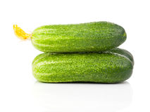 Cucumber with inflorescence Stock Photography