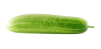 Cucumber isolated over white background. Royalty Free Stock Photos