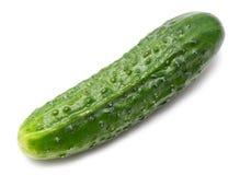 Cucumber Royalty Free Stock Photos