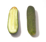 Cucumber isolated on white background. Stock Photography