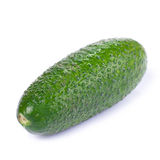 Cucumber isolated on white background Royalty Free Stock Photography