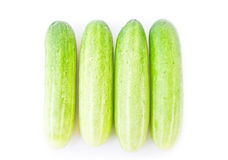 Cucumber isolated on a white background Stock Photos