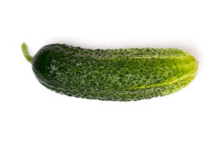 A cucumber. Just one cucumber. On white background Stock Photos
