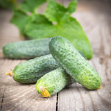 Cucumber with leaves. On the old wooden table Stock Image
