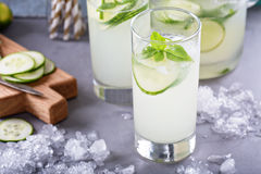 Cucumber lemonade in tall glasses. Homemade cucumber basil lemonade in tall glasses Royalty Free Stock Photography