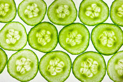 Cucumber line-up Stock Photo