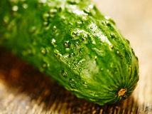 Cucumber macro Royalty Free Stock Images