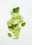 Cucumber and Mint Stock Images