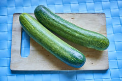 Cucumber on natural lght Stock Images