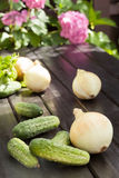 Cucumber and onion. Preparation of inventories for the winter Stock Photos