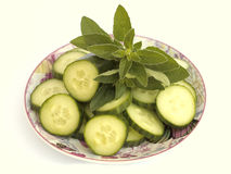 Cucumber and oregano Stock Image