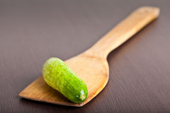 Cucumber on paddle Stock Photos