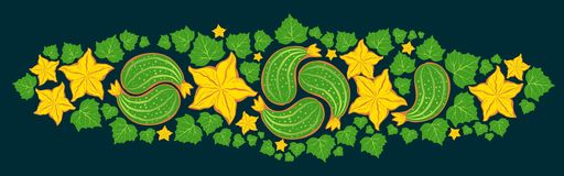 Cucumber paisley ornament with flowers and leaves Stock Image