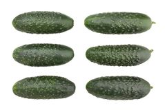 Cucumber. Path isolated on white royalty free stock photos
