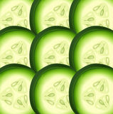 Cucumber pattern vector Stock Images