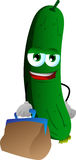 Cucumber or pickle with bag Stock Photo