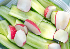 Cucumber and radis Royalty Free Stock Photography