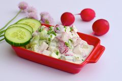 Cucumber radish salad. With yogurt and chives Royalty Free Stock Photos