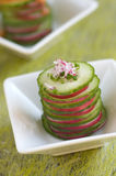 Cucumber and radish starter Royalty Free Stock Photo