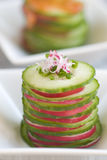 Cucumber and radish starter Royalty Free Stock Images