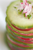 Cucumber and radish starter Royalty Free Stock Photography