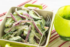 Cucumber and Red Onion Salad Royalty Free Stock Images