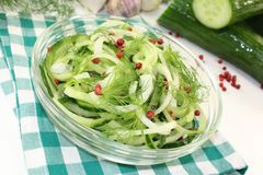 Cucumber salad Royalty Free Stock Image