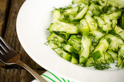 Cucumber salad with dill Royalty Free Stock Image