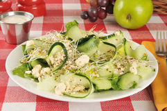 Cucumber salad. A healthy cucumber, sprout and feta cheese salad Royalty Free Stock Images