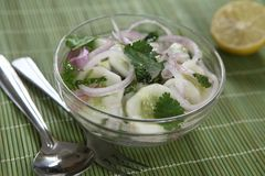 Cucumber salad with lime and cilantro royalty free stock photography