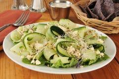 Cucumber salad Royalty Free Stock Photo