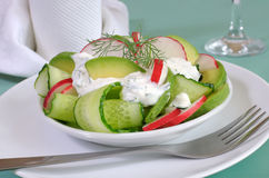 Cucumber salad with radish and avocado cream sauce. And dill Royalty Free Stock Photography
