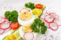 Cucumber salad with radish closeup. Cucumber laid out on a white plate with slices of radish, carnations Royalty Free Stock Photo