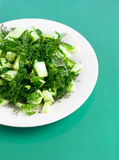 Cucumber salad on the round white plate on the green paper Royalty Free Stock Image