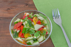 Cucumber salad wit coriander Royalty Free Stock Image