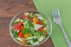 Cucumber salad wit coriander Royalty Free Stock Image