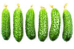 Cucumber set isolated on white background close up. Royalty Free Stock Photo
