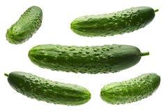 Cucumber set on white stock images