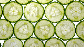 Cucumber slices. Isolated on a bright white background stock photography