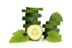 Cucumber Slices Stock Photography