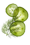Cucumber slices and dill Stock Photo