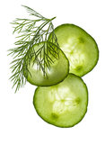 Cucumber slices and dill Stock Image