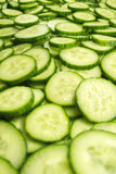Cucumber slices. Fresh Cucumber and slices white background Stock Images