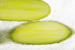 Cucumber slices in ice Stock Image