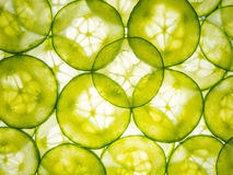 Cucumber slices lit from below Stock Photos
