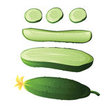 Cucumber. And  slices on a white background Stock Photo